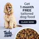 Tails - Free dog food for a month